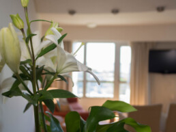 Hotel Maran Suites & Towers habitación presidencial flores