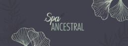 Promoción Spa Ancestral Hotel Maran Suites & Towers